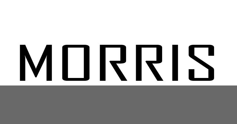 MORRIS - اعلام خرابی